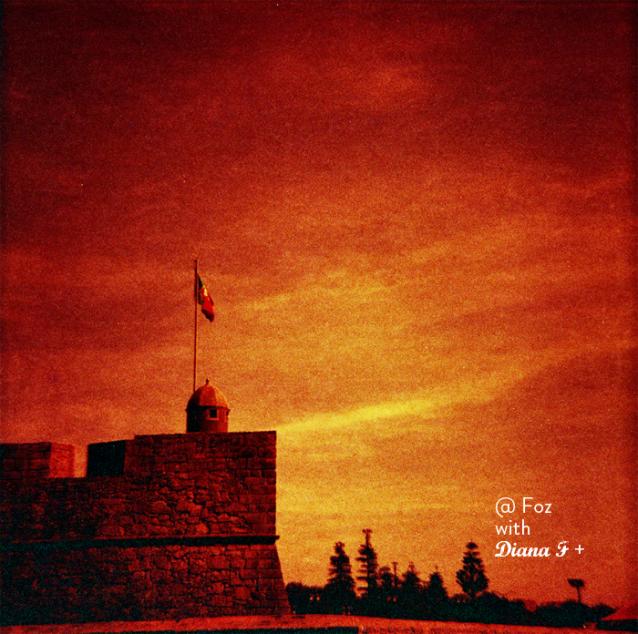 Diana F+ redscale film